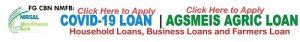 covid 19 loan